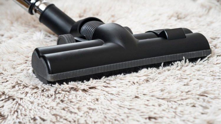 brushless vacuum for carpet