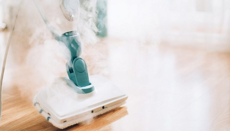 steamer vacuum reviews